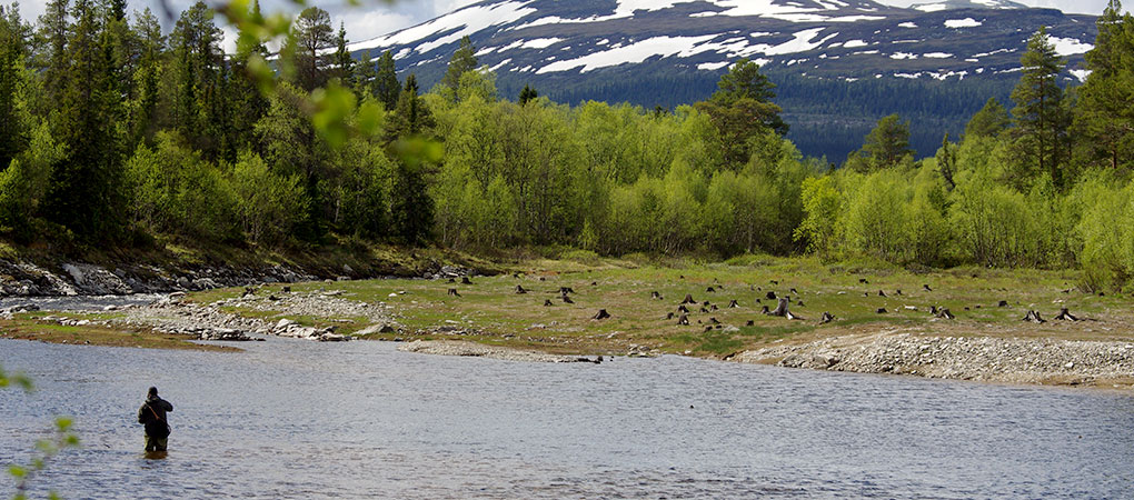 Fiske i Härjedalen, Schweden