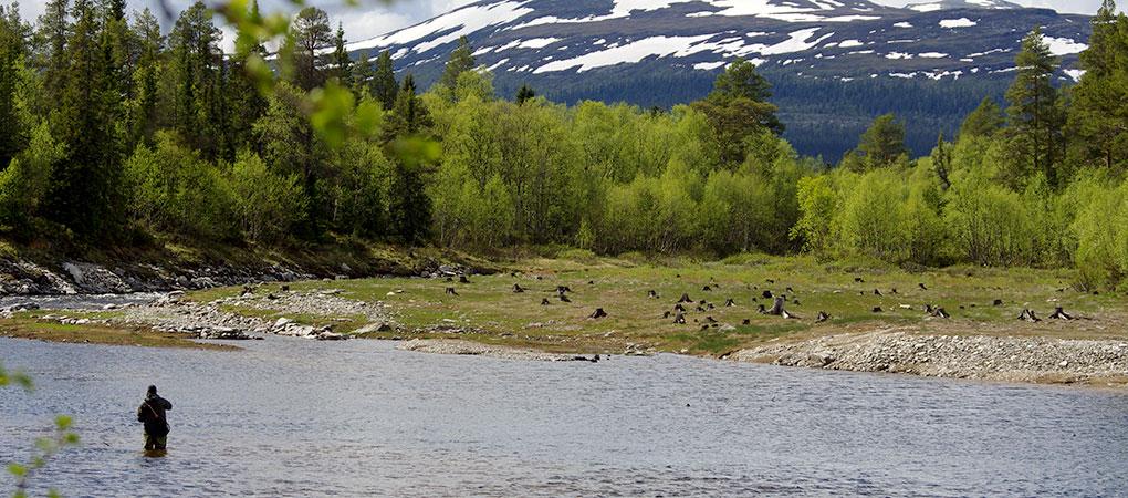 Fiske i Härjedalen, Suède